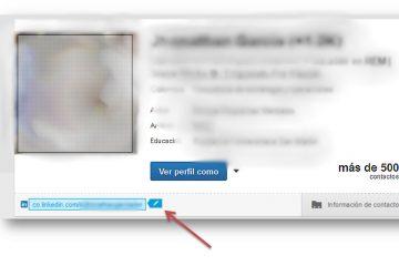 Como cambiar mi direccion web en linkedin